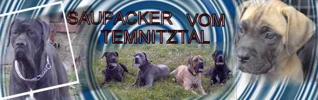 http://www.saupacker-vom-erzgebirgsblick.de/html/images/tmnitztal.jpg